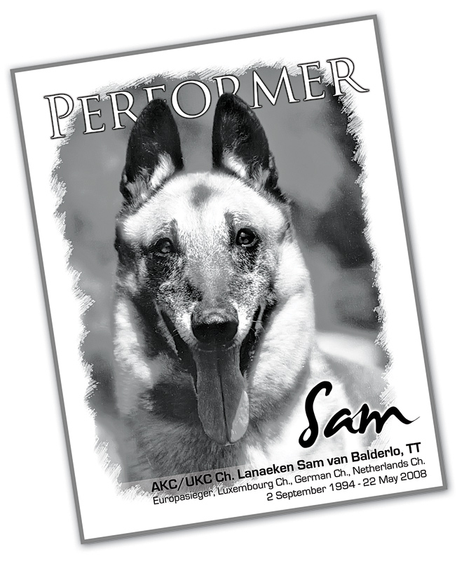 performer_cover_sam